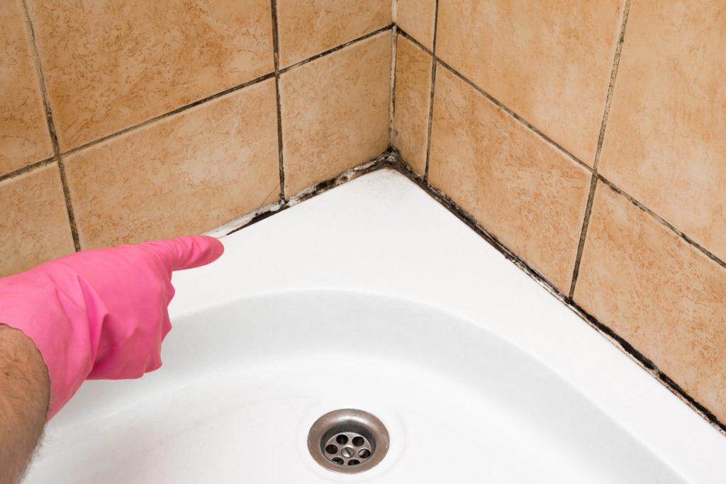 pleseň v rohu kúpeľne