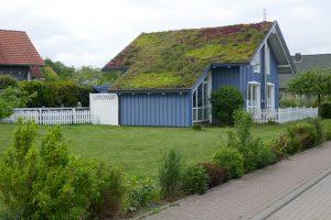 Aké majú výhody zelené a vegetačné strechy?