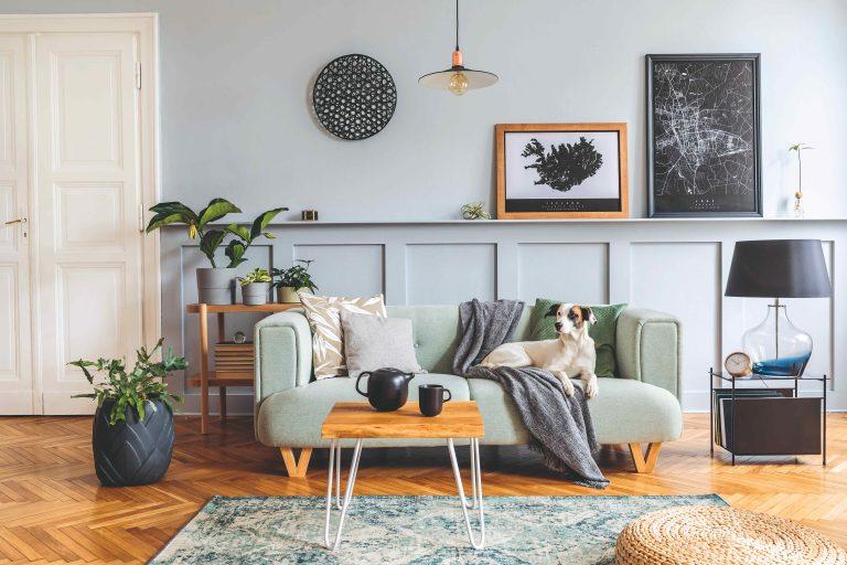 Zaostrené na maľovanie v interiéri