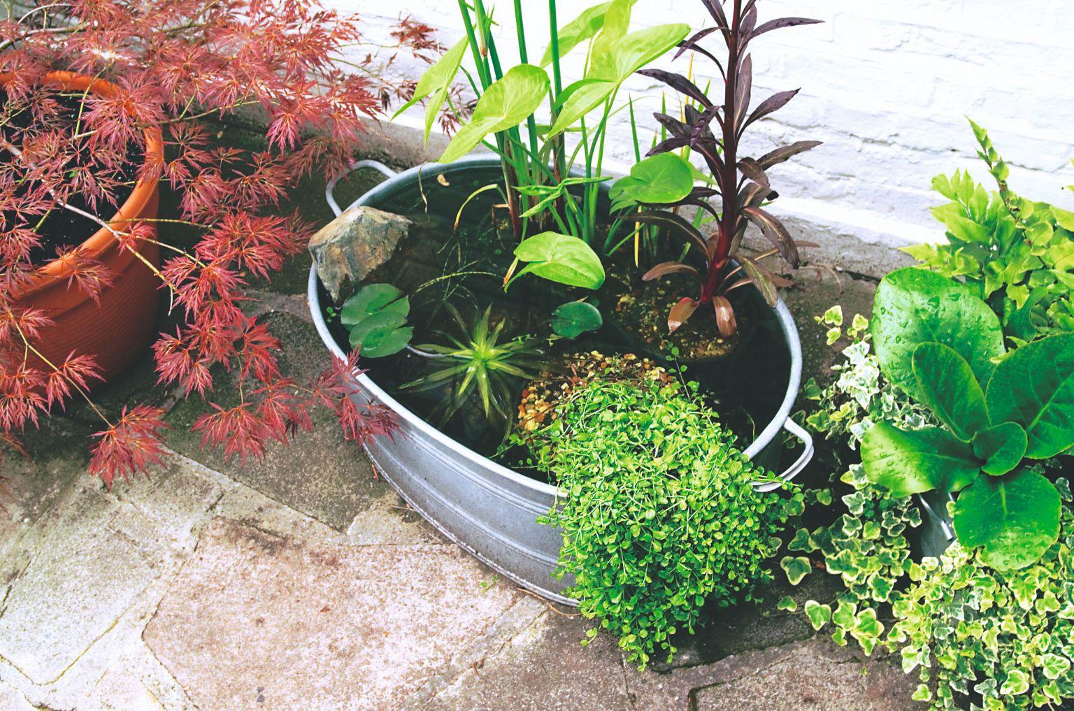 06_Gardeners World