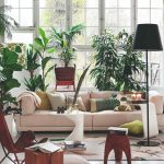 Obývačka plná rôznych druhov izbových rastlín