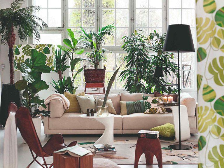 Urban jungle – interiérový štýl, ktorý vás prenesie z mesta do exotiky
