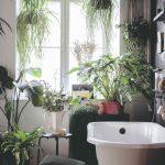 Boho kúpeľňa s vaňou plná rastlín