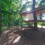 Tree house_Antonín Matějovský4