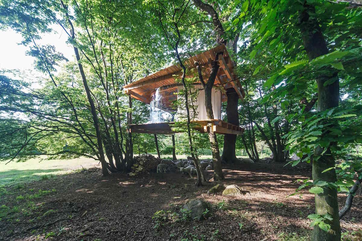 Tree house_Antonín Matějovský5