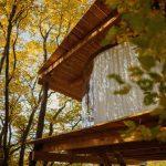 Levitujúci stromodom s transparentným plášťom