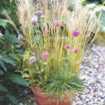 Kvetináč s kvetmi v kombinácií s trávou