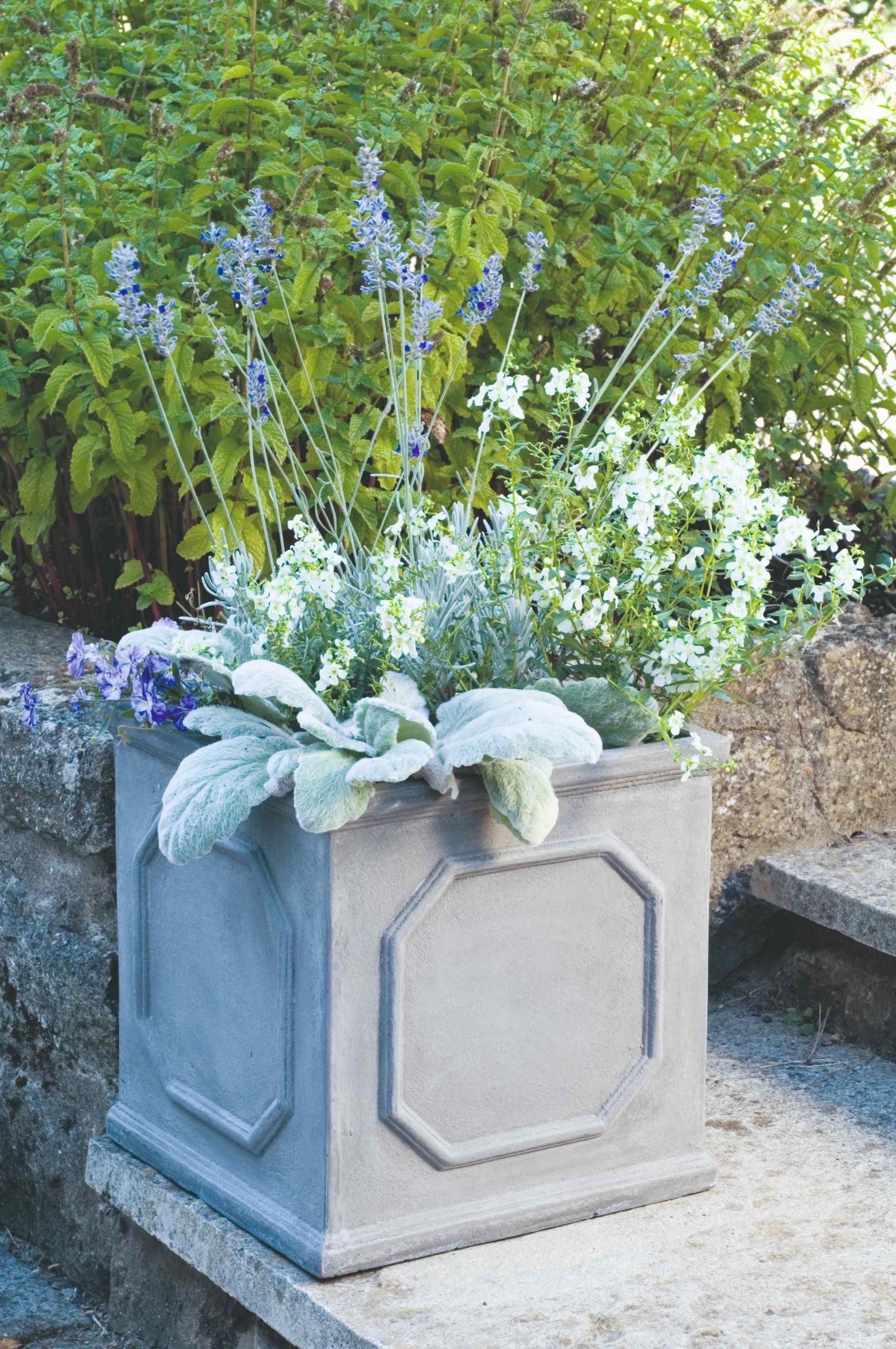 Kvetiny v kvetináči ladené do strieborna