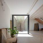 Moderný priestor víkendového domu so stromom v átriu