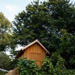 Drevený domček v húštine