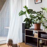 Prízemná obývačková zostava a dieťa