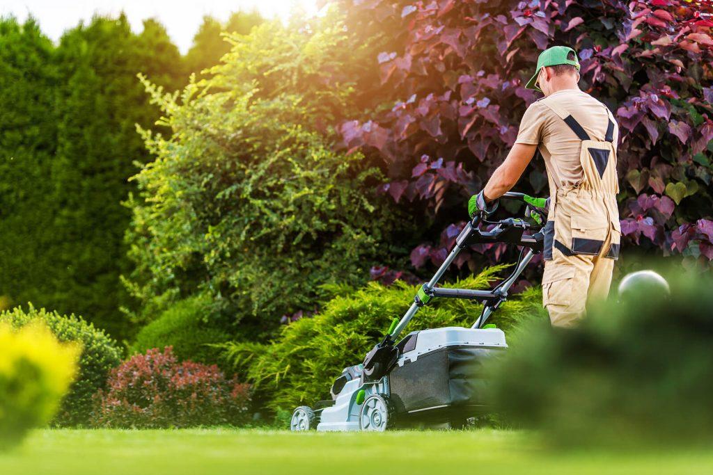 Starostlivosť o záhradu počas leta v 5 jednoduchých krokoch