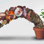 Zem z kvetináča so zvyšami zeleniny