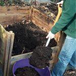Vyberanie kompostu