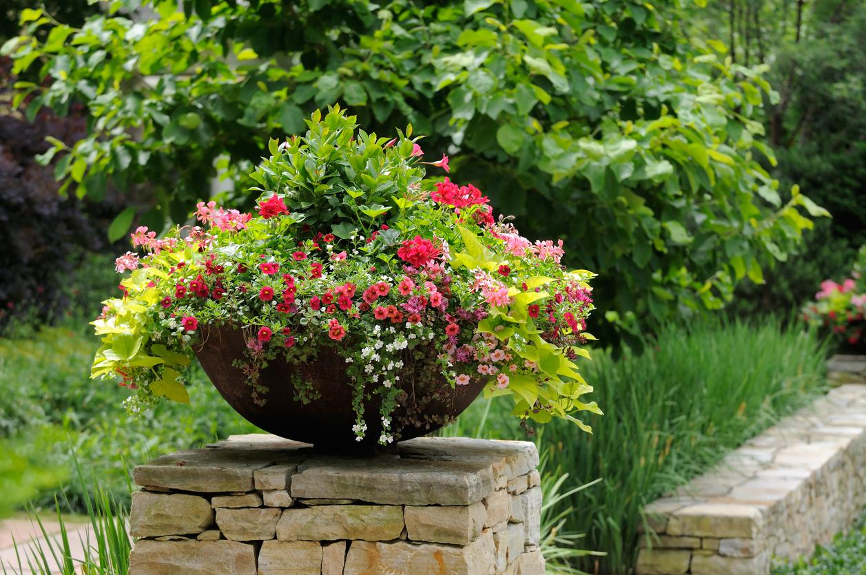 Veľká nádoba s kvetmi v záhrade