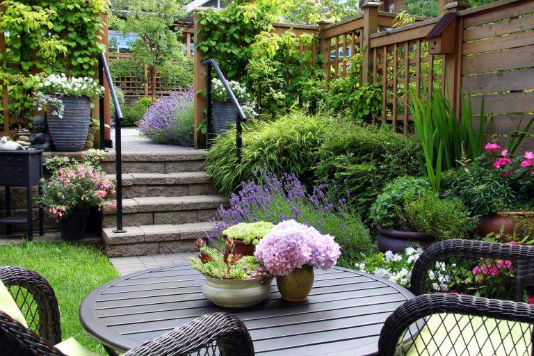 Ako sa vyhnúť najčastejším chybám pri navrhovaní záhrady