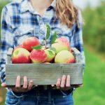 Žena drží jablká v prepravke