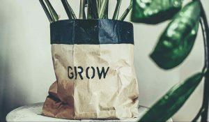 Originálne kvetináče, ktoré dajú vašim rastlinám svieži outfit